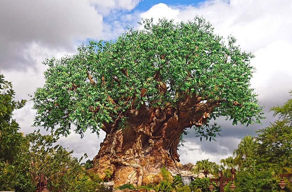 The Tree of Life is the centrepiece of Disney's Animal Kingdom
